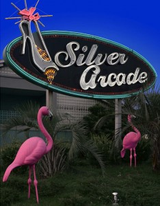 Silver Arcade; Hamer, SC 2003