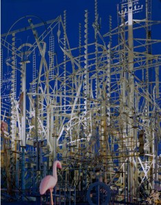 Billy Tripp' Mindfield; Brownsville, TN 2009